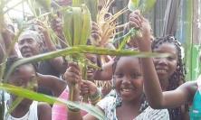 Palm Sunday 2015 in Managrú